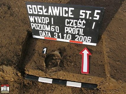 Cmentarzysko ciałopalne zwczesnej epoki żelaza wGosławicach, gm. Wierzchosławice, pow. Tarnowski, woj.Małopolskie