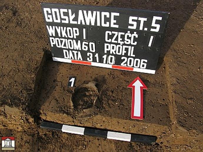 Cmentarzysko ciałopalne z wczesnej epoki żelaza w Gosławicach, gm. Wierzchosławice, pow. Tarnowski, woj. Małopolskie