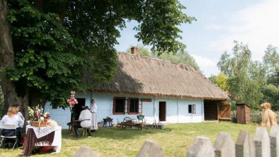 Godziny otwarcia icennik | Muzeum Wincentego Witosa wWierzchosławicach