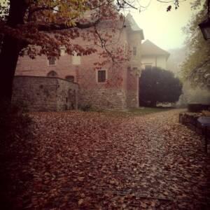 otoczenie zamku wysłane jesiennymi liśćmi