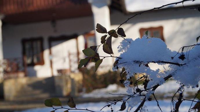 Pierwszy śnieg wdworze wDołędze [ZDJĘCIA]